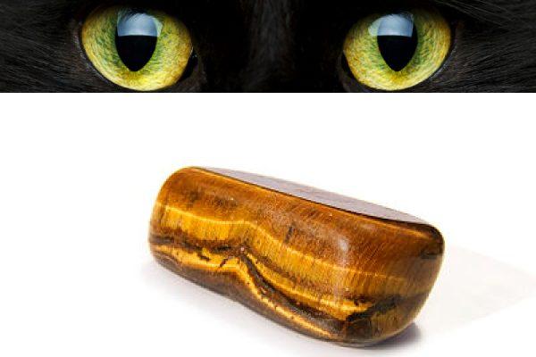 hiệu ứng mắt mèo chatoyancy